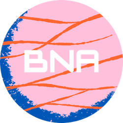 BNA Smart Payment Systems